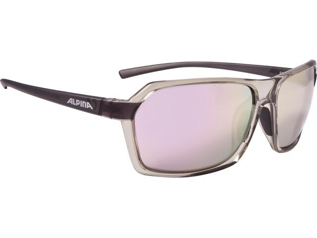 Alpina Finety Glasses transparent-grey